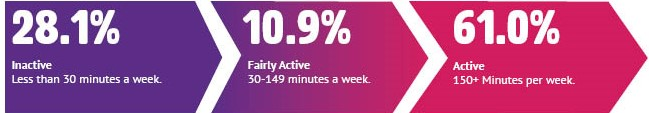 28.1% inactive, 10.9% fairly active, 61.0% active