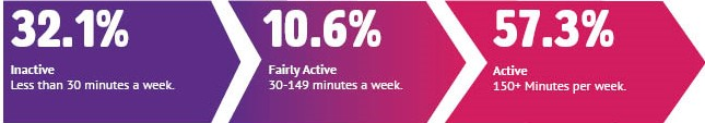 31.2% inactive, 10.6% fairly active, 57.3% active